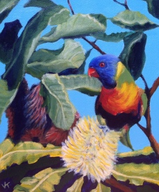 """Rainbow Lorikeet and Banksia"" Acrylic on Canvas 250mm x 310mm SOLD"