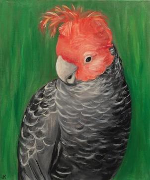 """""""Coy Boy"""" Acrylic on Canvas 610mm x 508mm $650"""
