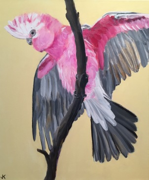 """""""Flaming Galah"""" Acrylic on Canvas 610mm x 508mm SOLD"""