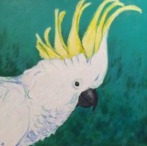 """Hello Cocky"" Acrylic on Canvas 762mm x 762mm $950"