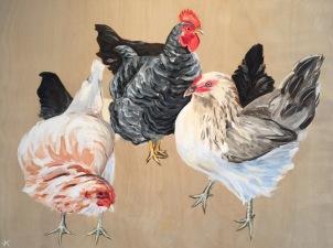 'Chookas' Acrylic on Birch Panel 610mm x 460mm $700