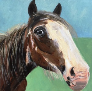 'Not Mr Ed' Acrylic on Canvas 300mm x 300mm $400