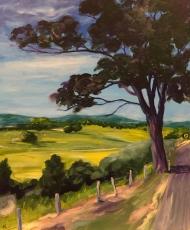 Road To Murwillumbah - John Klein - Web