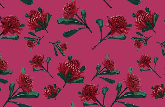 Scarf Design _ John Klein_ Waratahs with watermelon background
